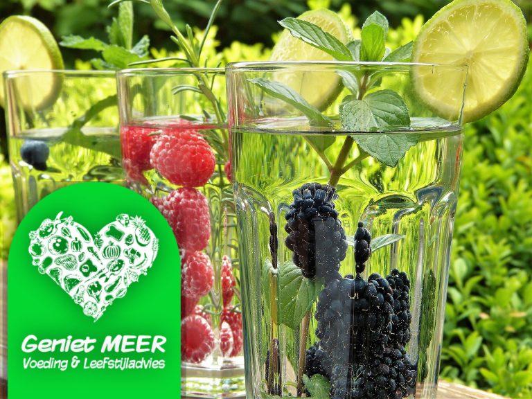 zomer fruitwater | Geniet MEER
